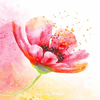 Bela flor lateral com pólen