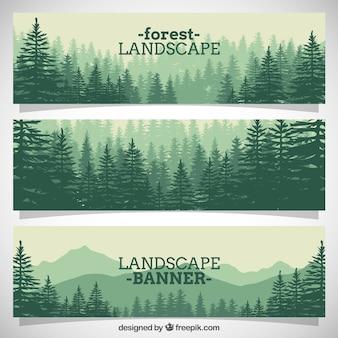 Bela floresta pinheiros completos banners