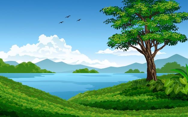 Bela ilustração da natureza com lago e prado