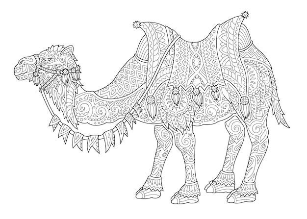 Bela ilustração vetorial linear monocromática para a página do livro de colorir adulto com a silhueta estilizada do camelo isolada no fundo branco
