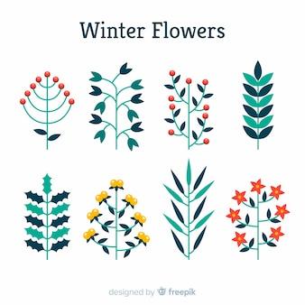 Bela mão desenhada coleção de flores de inverno