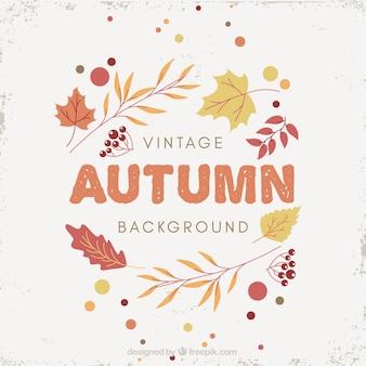 Bela mão desenhada outono elementos e folhas de fundo