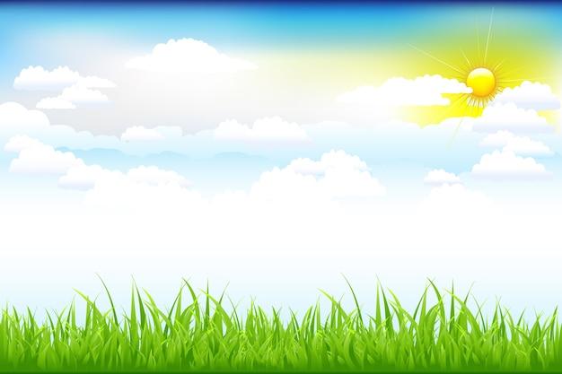 Bela paisagem com grama verde e céu azul, nuvens e sol