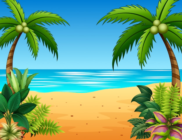 Bela paisagem do mar com plantas na beira-mar