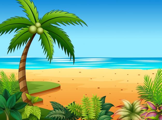 Bela paisagem do mar com vegetação na beira-mar