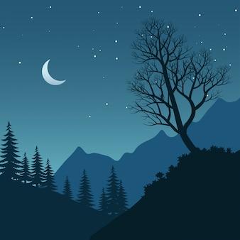 Bela paisagem noturna com árvore nua