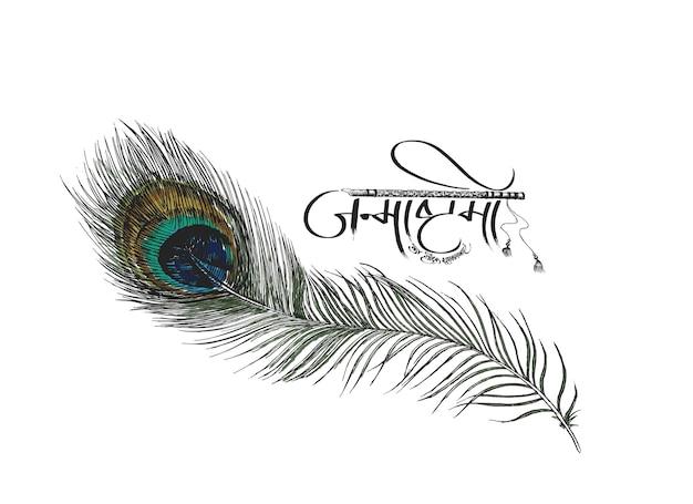 Bela pena de pavão no fundo branco ilustração em vetor esboço desenhado à mão
