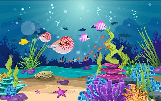 Bela subaquática. vários tipos de peixes, recifes de corais e algas.
