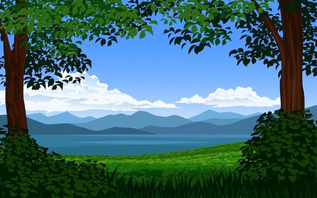 Bela vista do lago em árvores