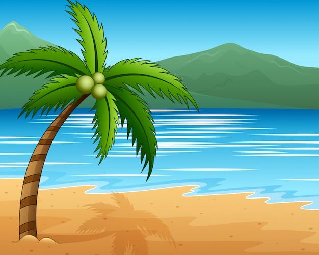Bela vista do mar à beira-mar com coqueiros e montanhas