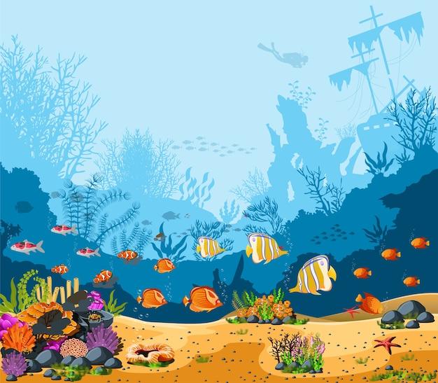 Belas profundezas do oceano