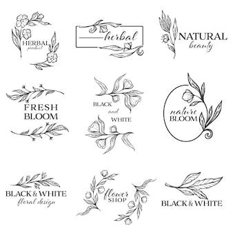 Beleza natural e produtos à base de plantas, design floral preto e branco, banners minimalistas isolados. ornamentos com flores e molduras, flor e folhagem decorativa monocromática, vetor em estilo simples