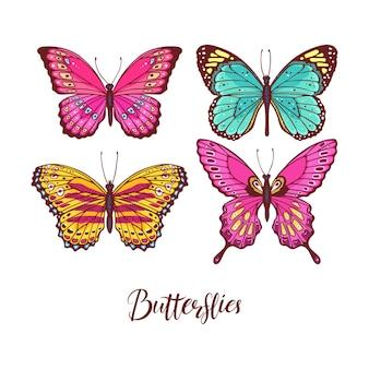 Belo conjunto de borboletas coloridas. ilustração desenhada à mão