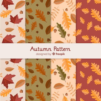 Belo conjunto de padrão de folhas outonais