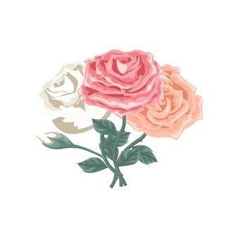 Belo conjunto de rosas de cor diferente