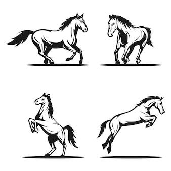Belo design de logotipo de cavalo isolado