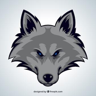 Belo fundo da cabeça do lobo