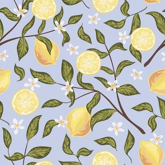 Belo padrão sem emenda com limões, flores e galho. papel de parede colorido desenhado de mão.