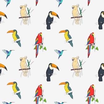 Belo padrão tropical com diferentes pássaros exóticos, sentado em galhos de árvores e voando no fundo branco.