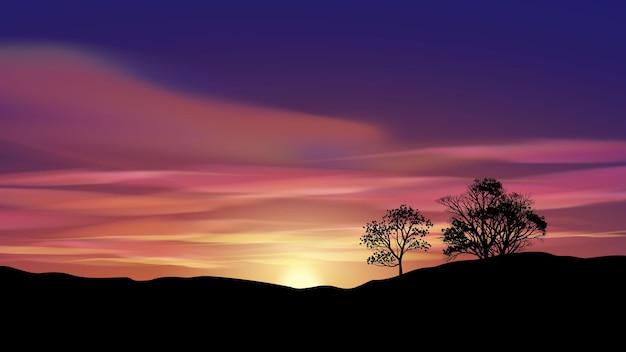 Belo pôr do sol com árvores e céu brilhante