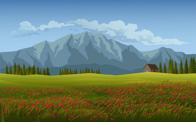 Belo prado em campo com flores e montanha
