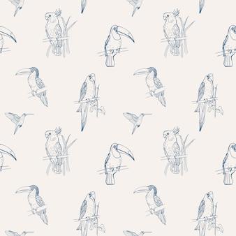 Belo tropical padrão sem emenda com diferentes pássaros exóticos, sentado em galhos de árvores e voando no fundo branco.