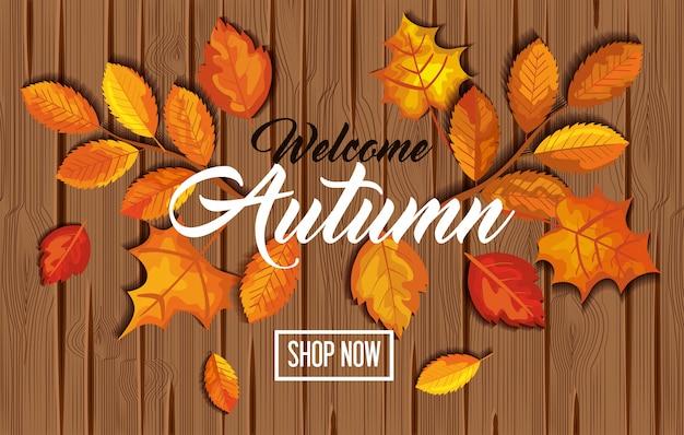 Bem-vindo outono com folhas no banner de madeira