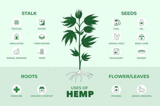 Benefícios do cânhamo de cannabis