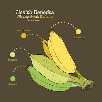 Benefícios para a saúde da banana