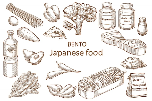 Bento. comida japonesa ingredientes. desenho vetorial