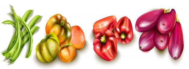 Berinjelas de legumes e aquarelas de tomates