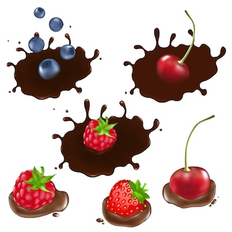 Berry in chocolate
