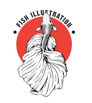 Betta fish hand draw