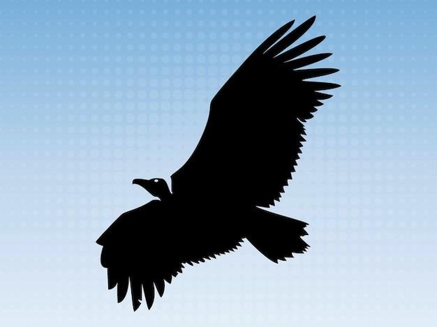 Big águia voando silhueta animais