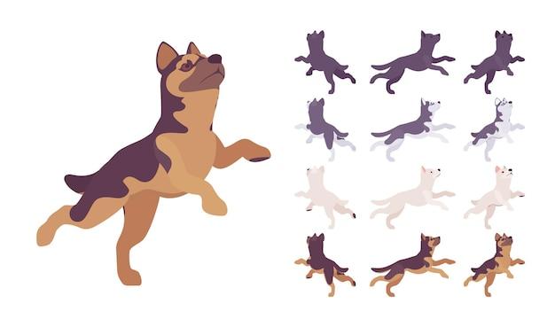 Black, white dog, husky, shepherd jumping set. animal de estimação, companheiro de família, guarda domiciliar, raça de segurança de fazenda ou policial. ilustração em vetor estilo simples dos desenhos animados isolada, fundo branco, diferentes pontos de vista