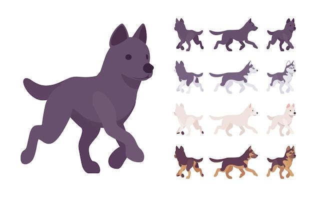 Black, white dog, husky, shepherd running set