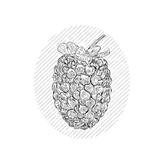 Blackberry desenhar gravura