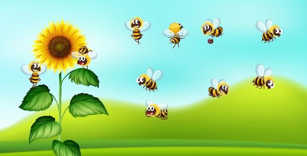 Blackground de natureza de abelha e girassol