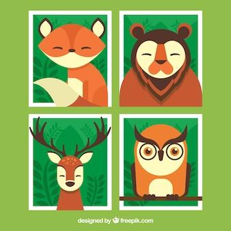 Bloco de quatro cartões com belos animais selvagens