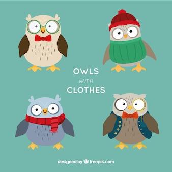 Bloco de quatro corujas com roupas