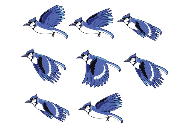 Blue jay flying bird animação sprite