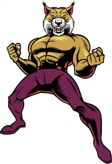 Bobcat lutador
