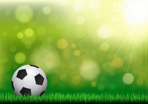 Bola na grama com fundo verde do bokeh da natureza.