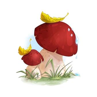 Boleto de dois cogumelos na grama da floresta.