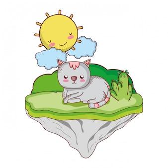 Bom gato animal na ilha flutuante