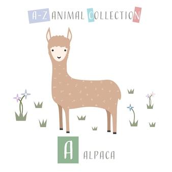 Bonito alcapa llama desenhos animados doodle alfabeto animal a Vetor Premium