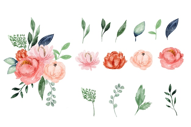 Bonito elemento de design de flores em aquarela