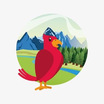 Bonito pássaro vermelho sobre a imagem de paisagem de floresta e montanhas