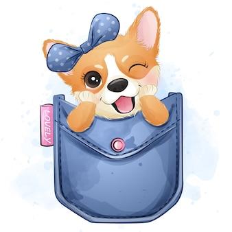 Bonito pequeno corgi sentado dentro de um bolso