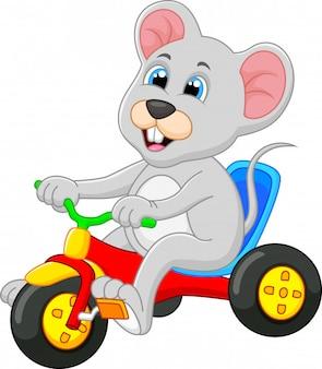 Bonito, rato, bicicleta equitação